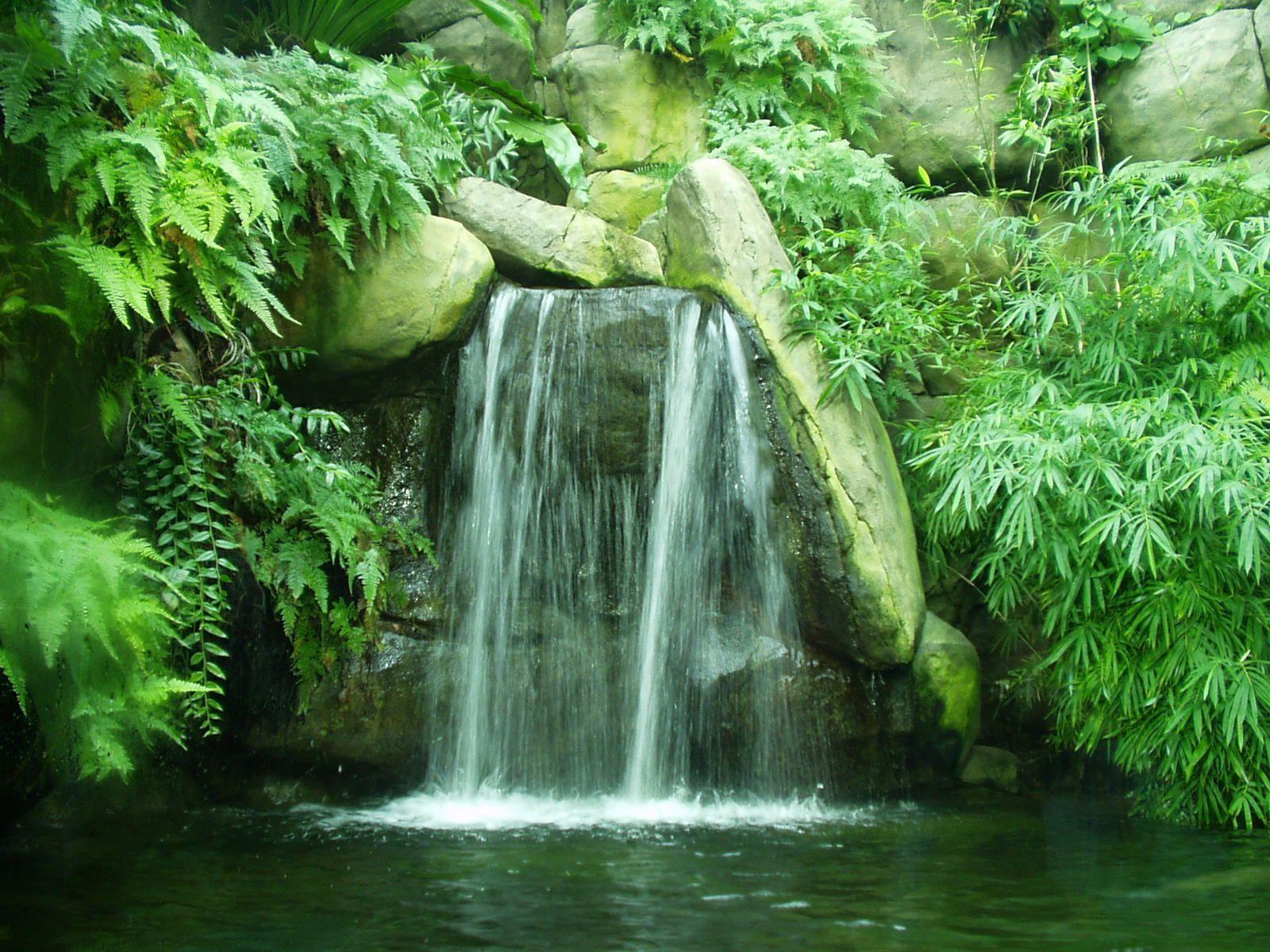 Petit jardin zen avec fontaine toulon 31 brightwhite - Petit outillage de jardin saint denis ...